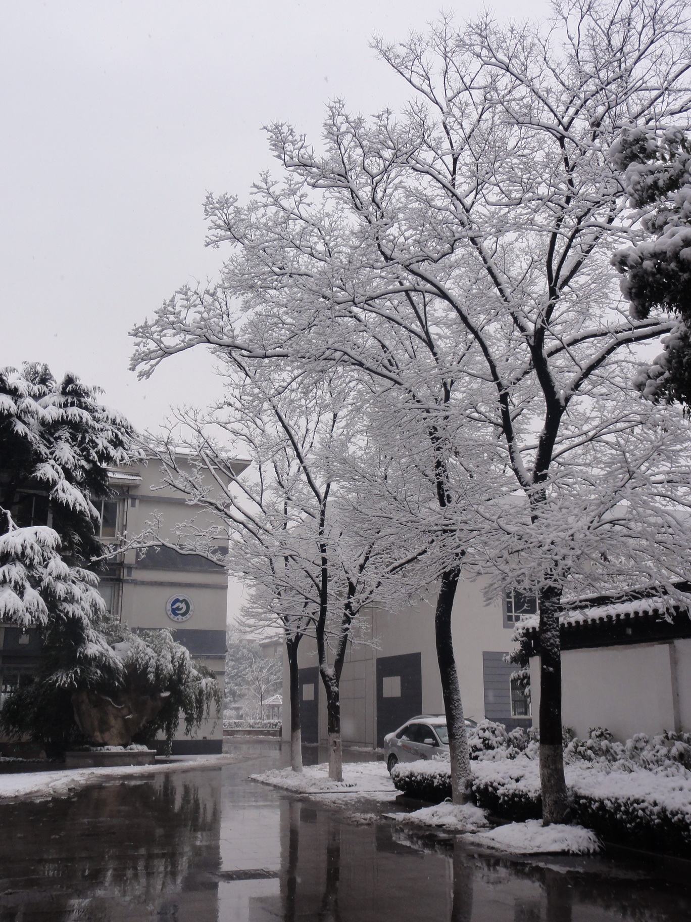 校園雪景(jing)